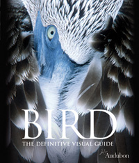 Book: Bird The Definitive Visual Guide
