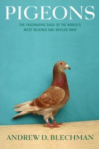 Cover of the Pigeon book