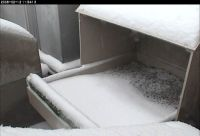 Snow on the nestbox...no birds.  12 Feb 2008