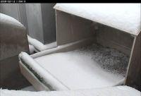 Snow on the nestbox...no birds.  12 Feb 2008