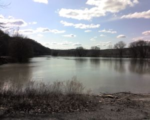 Allegheny River at Rosston, Armstrong County, Mar 23, 2008