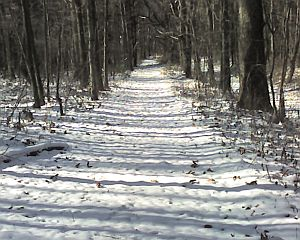 Winter at Moraine State Park (photo by Kate St. John)