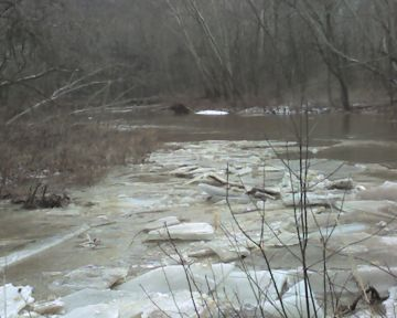 Ice jam on Raccoon Creek (photo by Kate St. John)