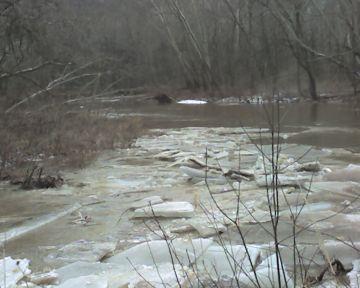 Ice jam on Raccoon Creek (photo by Kate St. John)