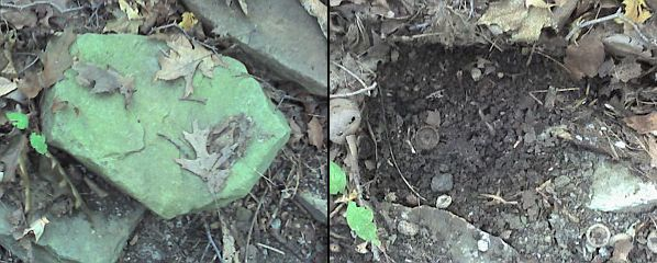 IRFD Before and After (photos from Kate St. John's cell phone)