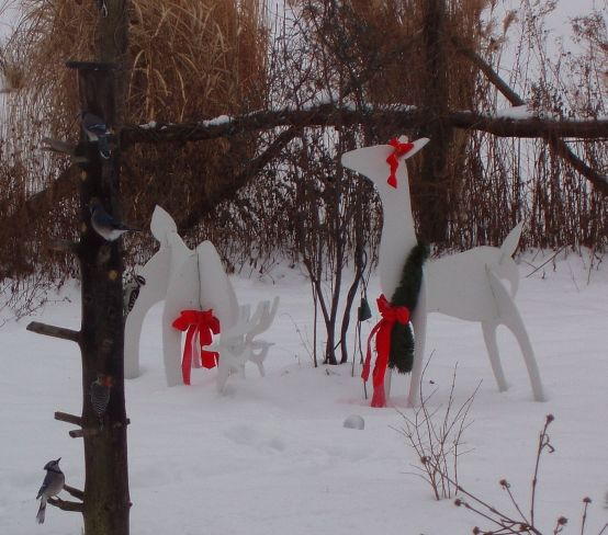 White Christmas (photo by Marcy Cunkelman)