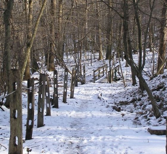 Snowy trail scene (phot by Dianne Machesney)