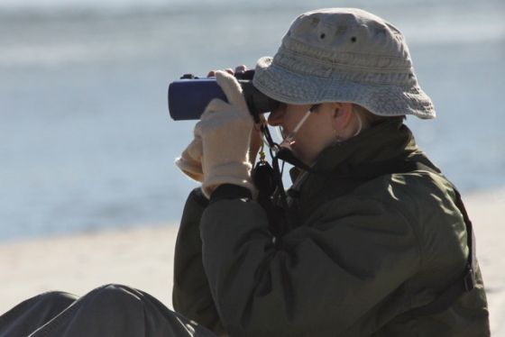 Kate St. John birding at Matanzas Inlet, Florida (photo by Chuck Tague)