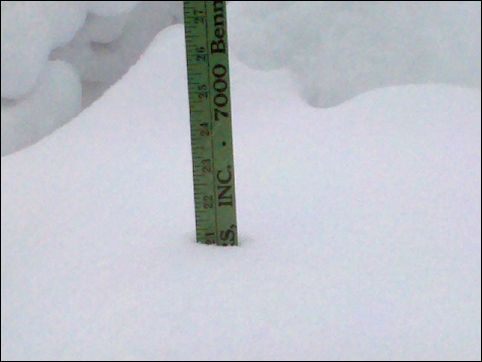 21 inches in my backyard, 8:00am Feb 6, 2010 and still snowing (photo by Kate St. John)