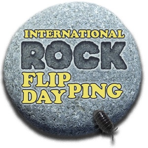 International Rock Flipping Day logo (from Wanderin' Weeta)
