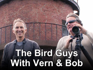 The Bird Guys With Vern and Bob (image from zap2it.com)