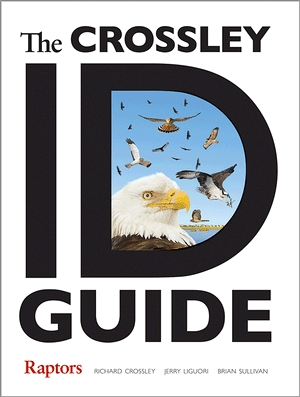 Crossley ID Guide: Raptors (image from Princeton University Press)