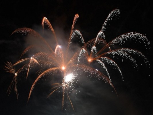 Fireworks (photo by Jon Sullivan via Wikimedia Commons)