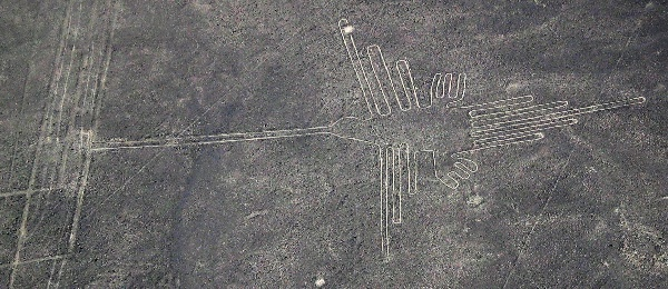 Retouched photo of Nazca hummingbird (photo from Wikimedia Commons)