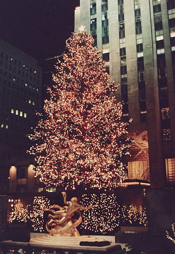 Christmas tree,Rockefeller Center, 1987, gift of Oslo, Norway (photo from Wikimedia Commons)
