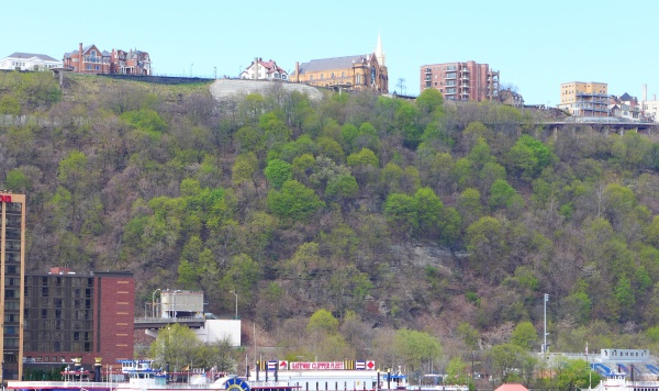 Spring green trees in Mt. Washington, Pittsburgh (photo by Kate St. John)