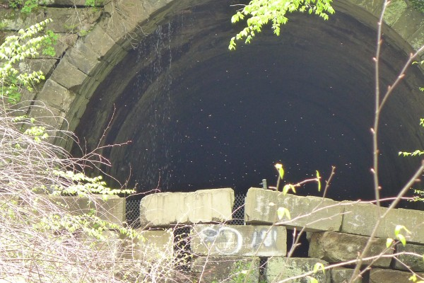 Abandoned railroad tunnel, Armstrong Trail, Brady's Bend (photo by Kate St. John)