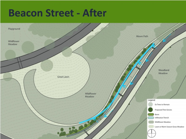 Schenley Park, future meadow at Beacon (from Pittsburgh Parks Conservancy, Panther Hollow Restoration Plan)