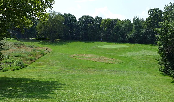 Schenley Park Golf Course, Hole 14, the rough is for birds (photo by Kate St. John)
