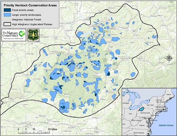 Priority hemlock conservation areas on the Allegheny High Plateau (map from The Nature Conservancy and US Forest Service)
