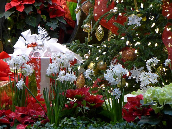 Christmas decorations at Phipps Conservatory (photo by Kate St. John)
