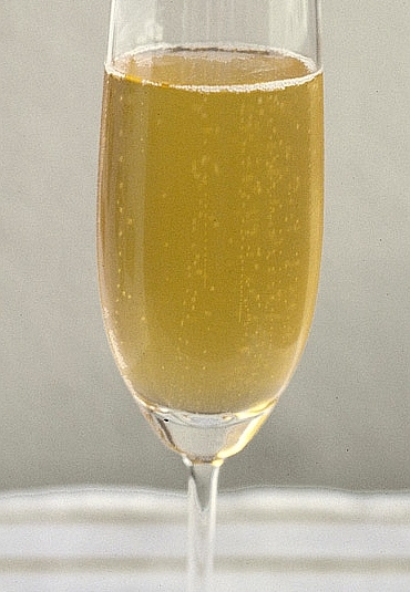Bubbles in a glass of champagne (photo from Wikimedia Commons)