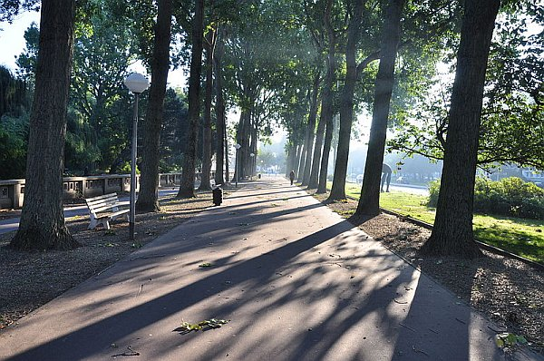 Shadows on Avenue Foch, along the Saint-Roch Square, Le Havre (photo from Wikimedia Commons)