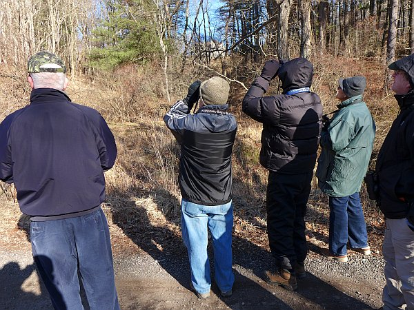 Participants on the New Year's Day hike at Irwin Rd (photo by Kate St. John)