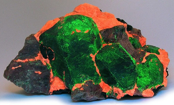 Willemite-Franklinite-Rhodonite under ultraviolet light from the Sterling Mine, Ogdensburg, NJ (photo by Rob Lavinsky, iRocks.com – CC-BY-SA-3.0, via Wikimedia Commons)
