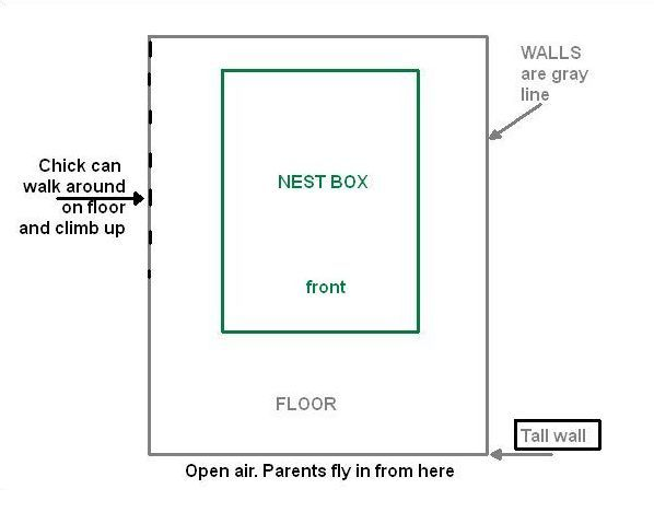 The Cathedral of Learning nest is surrounded by high and low walls (diagram by Kate St. John)