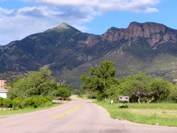 Looking toward Carr Canyon, Arizona (photo by Kate St. John)