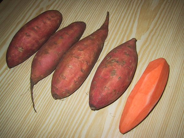 Sweet potatoes or yams (photo by Jérôme Sautret via Wikimedia Commons)