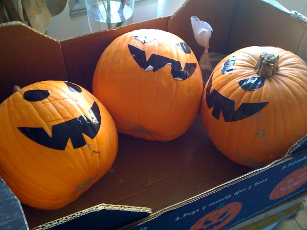 Halloween pumpkins, uncarved (photo from Wikimedia Commons)