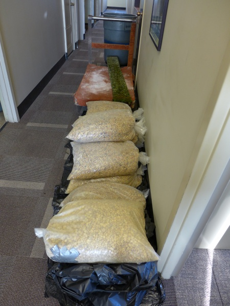 10 bags of pea gravel for the nest (photo by Kate St.John)