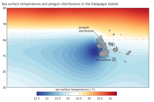 Map of annual sea surface temperature and distribution of penguins at the Galapagos (map from climate.gov, adapted from original in Karnauskas, et al., 2015.)