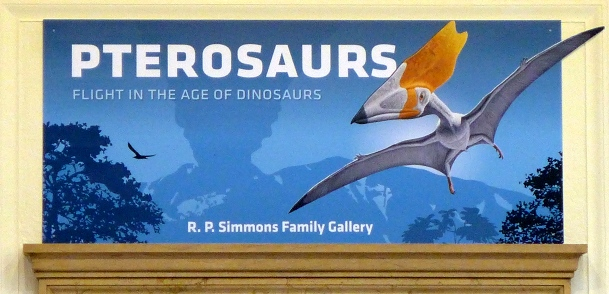 Pterosaurs banner at Carnegie Museum of Natural History, Pittsburgh (photo by Kate St. John)