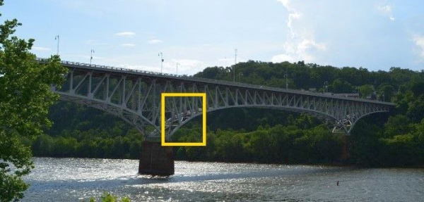Location of nest under Homestead Grays Bridge (photo by John English)