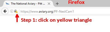 screenshot_firefox1_aviaryURL