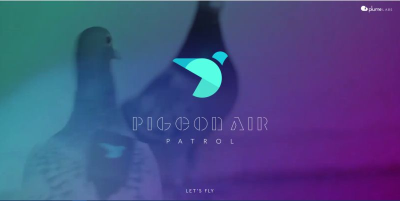 Screenshot from Pigeon Air Patrol website: pigeonairpatrol.com