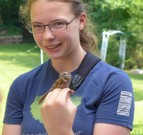 Bander Becca Ralston holds a male song sparrow at Neighborhood Nestwatch (photo by Kate St. John)