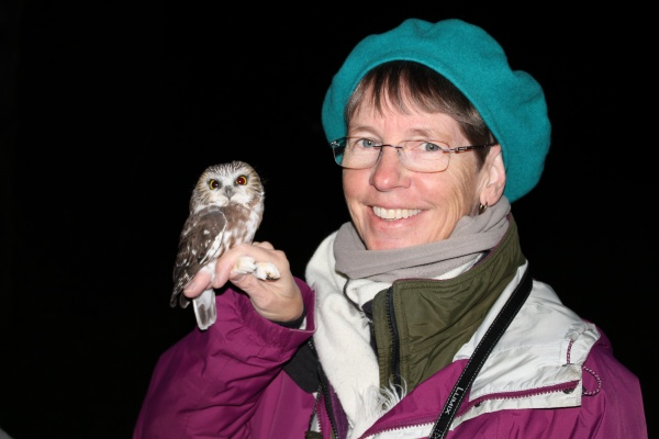 Kate St. John holding a banded northern saw-whet owl, 26 Oct 2016 (photo by Doug Cunzolo)