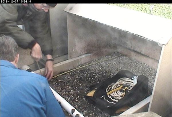 Kate measures the box while Bob unwraps the rope on the front perch (photo from the National Aviary snapshot cam at Univ of Pittsburgh)