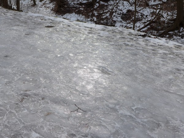 Icy path in Schenley Park, Feb 2015 (photo by Kate St. John)