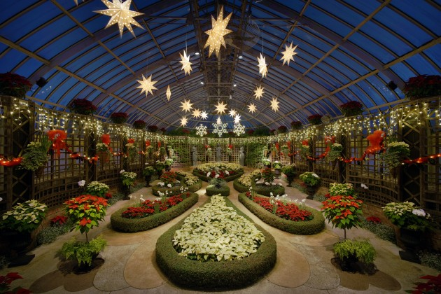 Phipps Conservatory Winter Flower Show 2015, Broderie Garden (Featured photo from Wikimedia Commons)