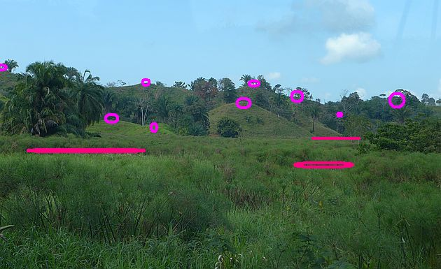 Hilltops (light pink) and pockets (dark pink) in the subduciton zone near Quepos, Costa Rica (retouched photo by Kate St. John)