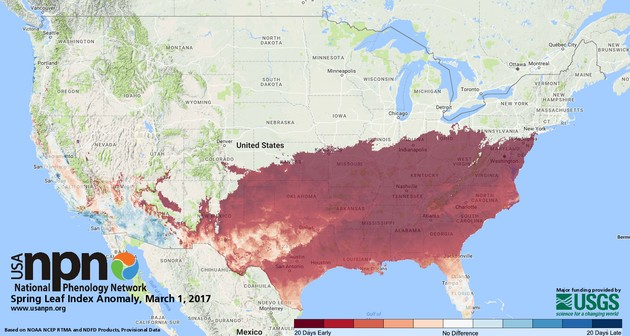 Status of Spring: Leaf Index Anomaly, 1 March 2017 (map from USA National Phenology Network, usanpn.org)