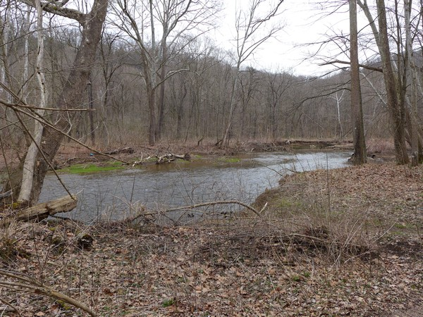 Raccoon Creek at the Wildflower Reserve, 26 Mar 2017 (photo by Kate St. John)