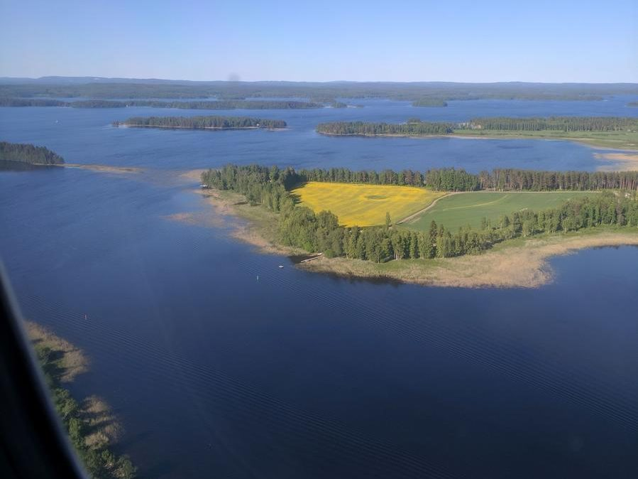 Coming to Kuopio: From the air an island with a crop of mustard seed