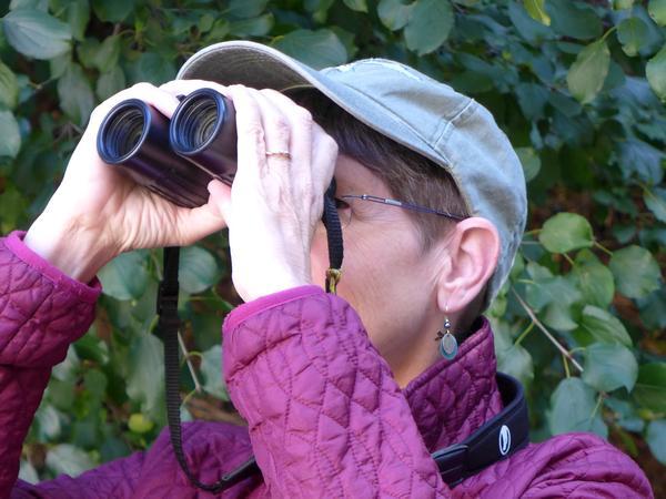 Kate St. John using binoculars (photo by Dave Hallewell)