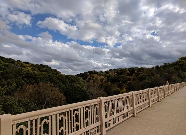 Beautiful clouds over Schenley Park, 24 October 2017 (photo by Kate St. John)